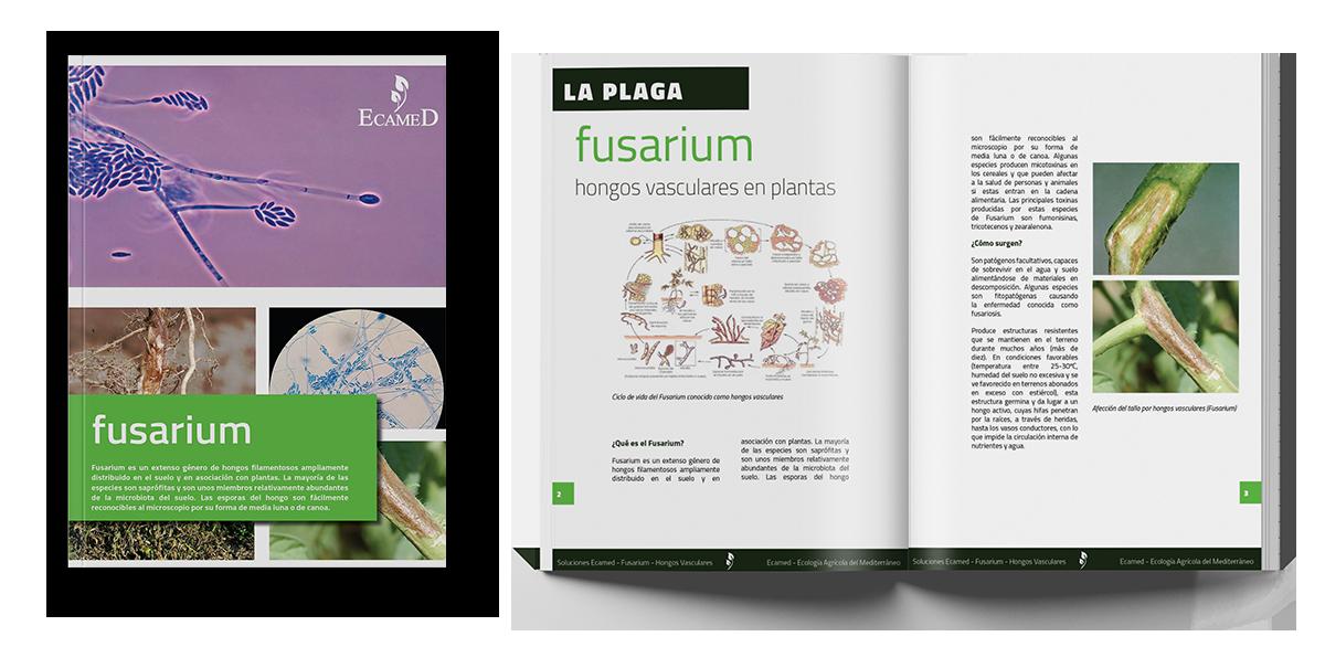 Soluciones Ecamed - Fusarium - Hongos Vasculares - Tomate y Pimiento - White Paper